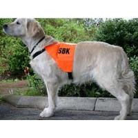 SBK:s Tävlingsväst Orange (L)