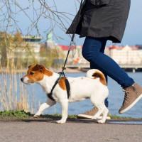 Pro Dog Antidragsele (L)