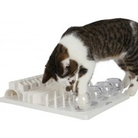 Cat Activity FunBoard