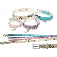 Royalty Halsband + Koppel - Beige