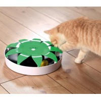 Cat activity Magnetic Mouse