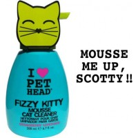 PET HEAD Fizzy Kitty Mousse Cleaner